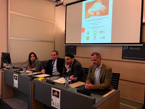 Rueda de prensa celebrada hoy en Bruselas con la participación de diversas organizaciones que representan al sector productor de arroz europeo.