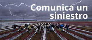 Comunica un siniestro