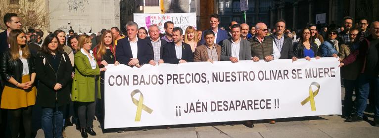 El Espíritu de Las Batallas lleva el clamor olivarero a concentrarse en los 97 municipios de la provincia de Jaén