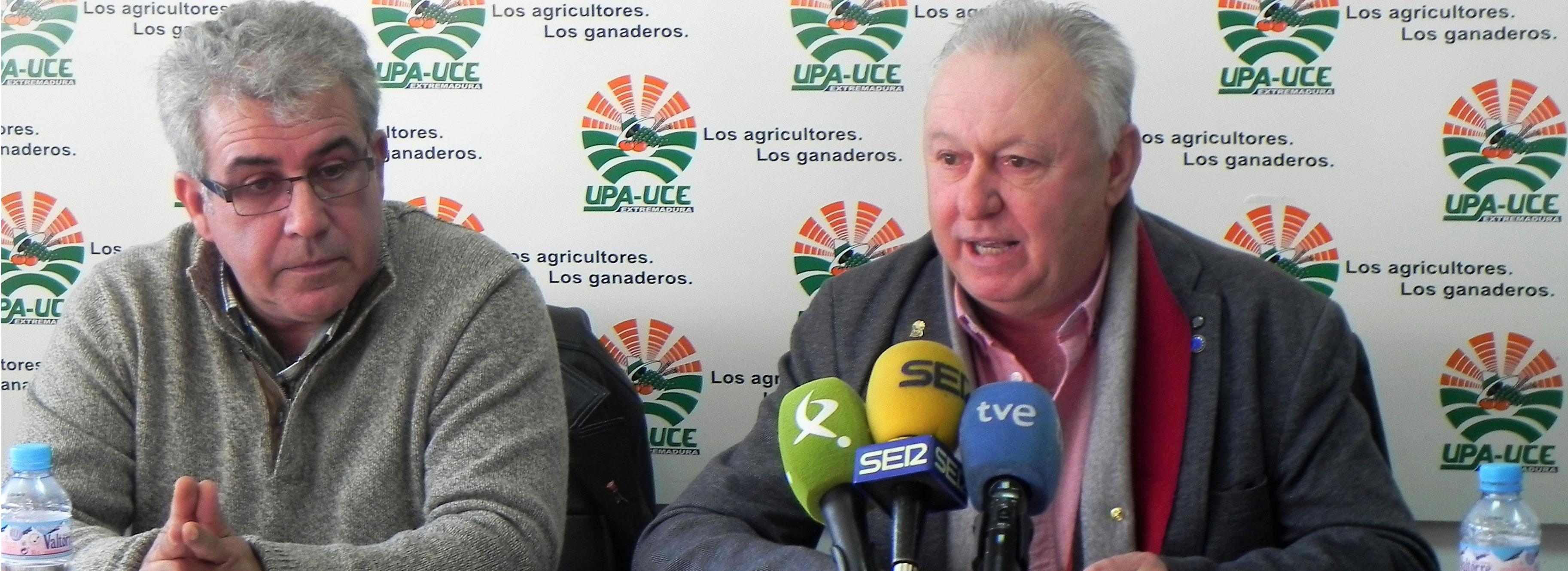 UPA-UCE reivindica estabilidad para garantizar el futuro del sector tabaquero en Extremadura