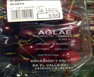 UPA-UCE Extremadura denuncia precios ruinosos en el arranque de la campaña cerecera