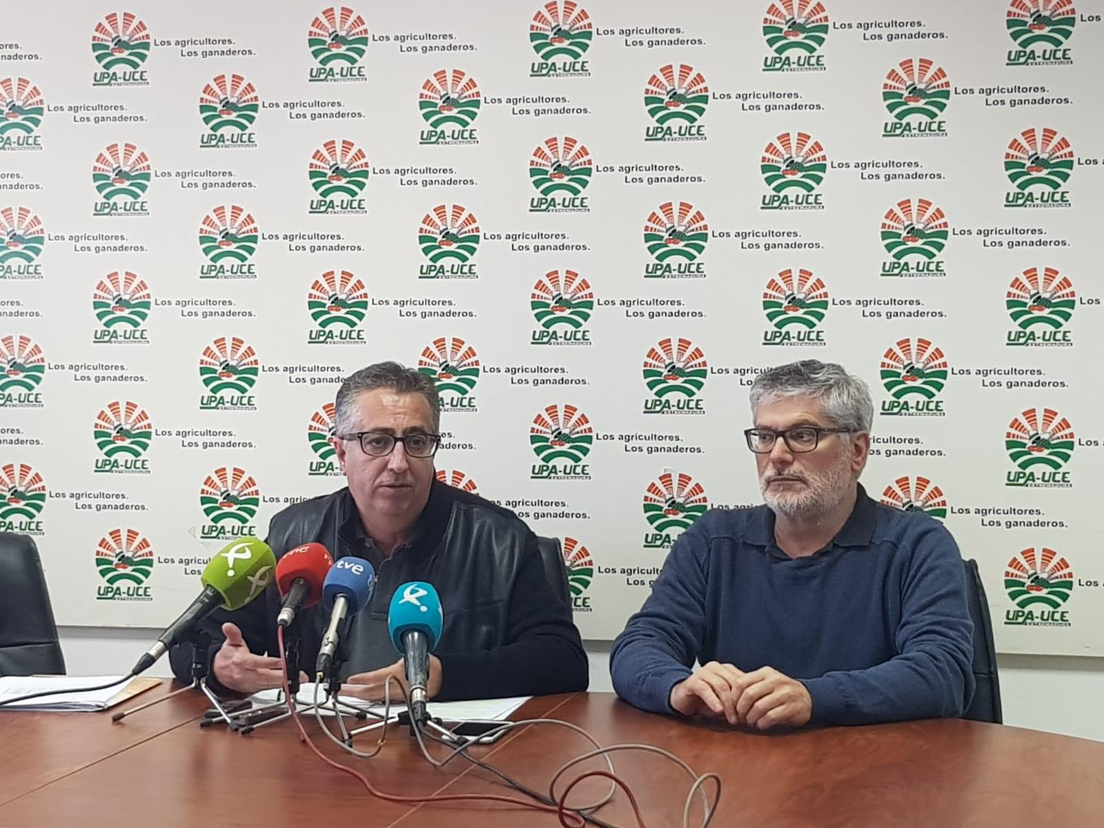 UPA-UCE Extremadura denuncia la especulación de los precios en origen del aceite