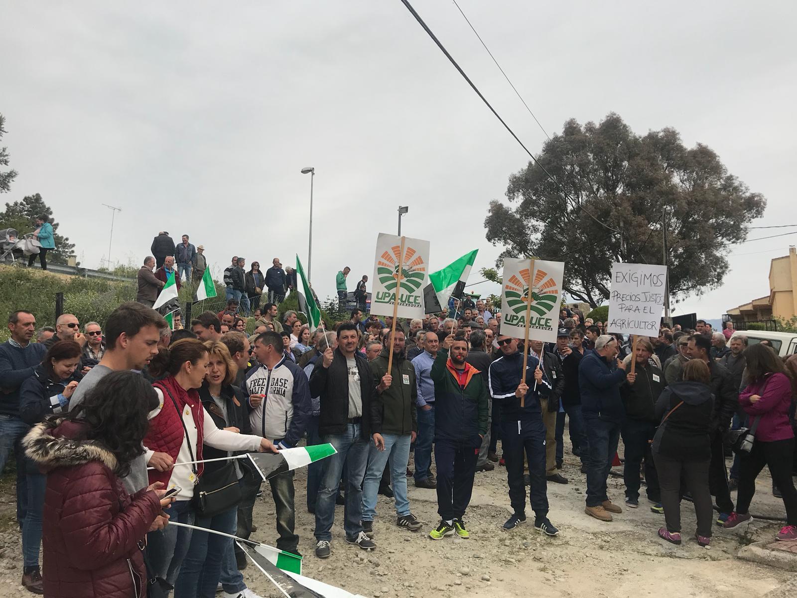 Los agricultores se movilizan para reclamar un aumento del precio del pimentón