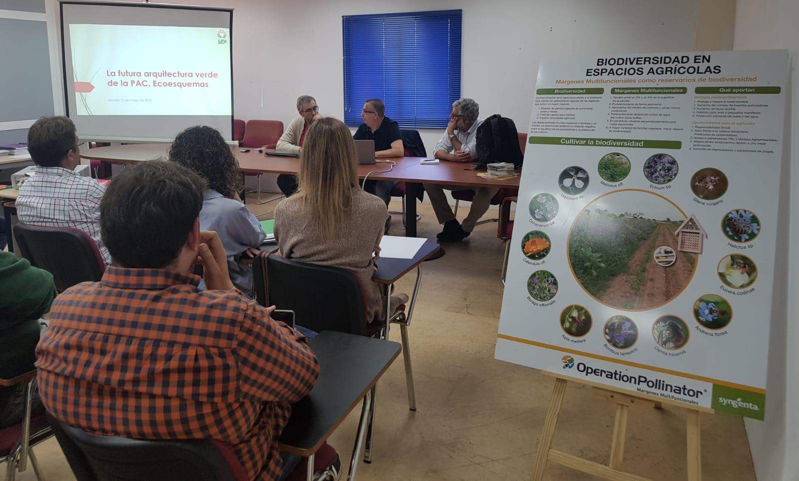UPA-UCE lanza un proyecto pionero para incrementar la población de insectos polinizadores
