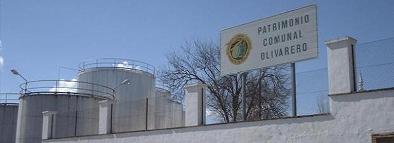 UPA propondrá que se prohíba el almacenamiento de aceite de oliva extranjero en las instalaciones del Patrimonio Comunal Olivarero