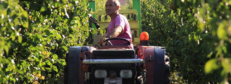 UPA-UCE reclama al Ministerio agilidad y presupuesto en la renovación de la maquinaria agraria
