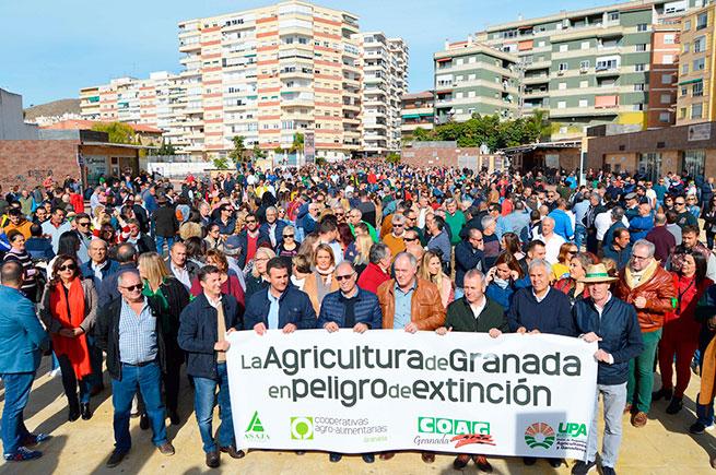 Manifestantes -en-Motril-Granada-655