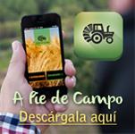 App A Pie de Campo